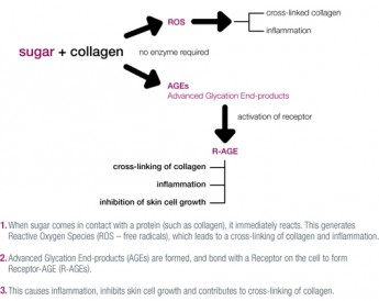what-causes-skin-aging-page-8